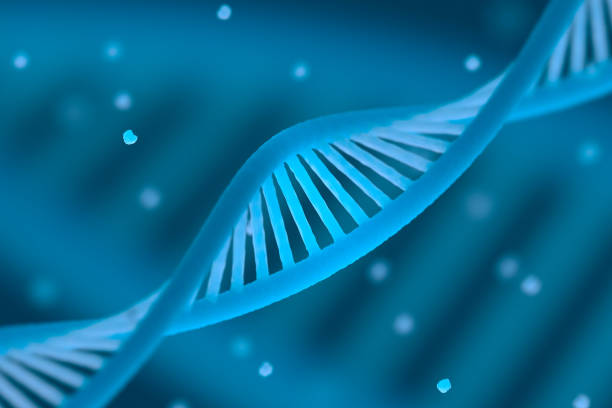 DNA chain macroshot DNA chain macroshot. Highly detailed render. Blue color. Scientific background or medical backdrop. Great for poster, book cover, flyer or folder. Shallow DOF. 3D illustration gene therapy stock pictures, royalty-free photos & images