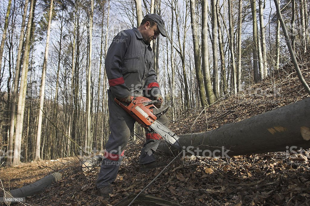 Chain saw royalty-free stock photo