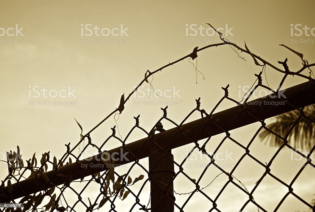 chainlink fence against the sky royalty-free stock photo