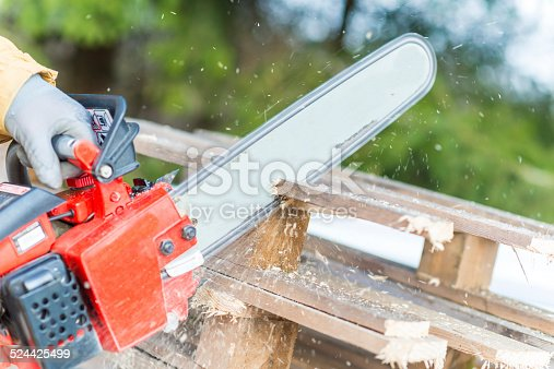 A lumberjack working with a chainsaw