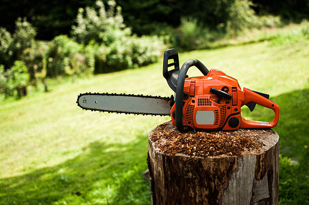 chainsaw - chainsaw stock photos and pictures