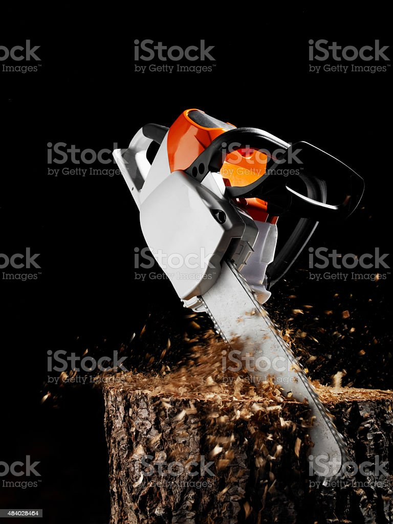 Chainsaw sawing in wood. stock photo