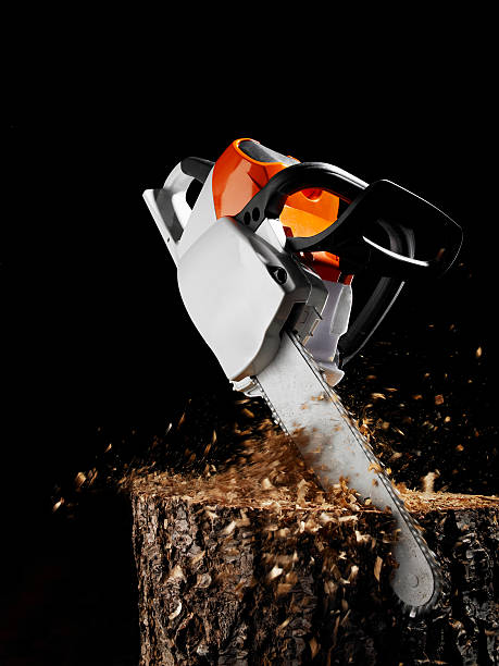 chainsaw sawing in wood. - chainsaw stock photos and pictures