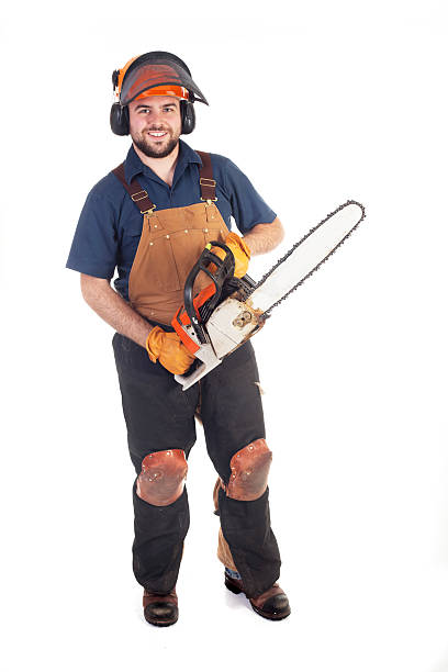 chainsaw worker - chainsaw stock photos and pictures