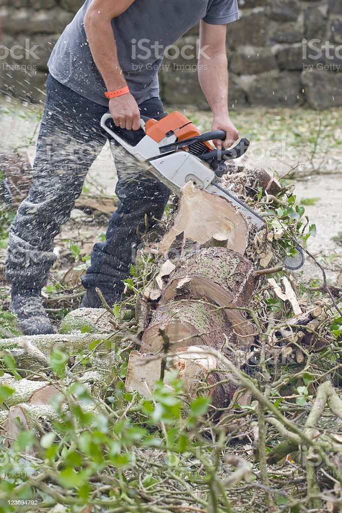 Chainsawing A Tree royalty-free stock photo