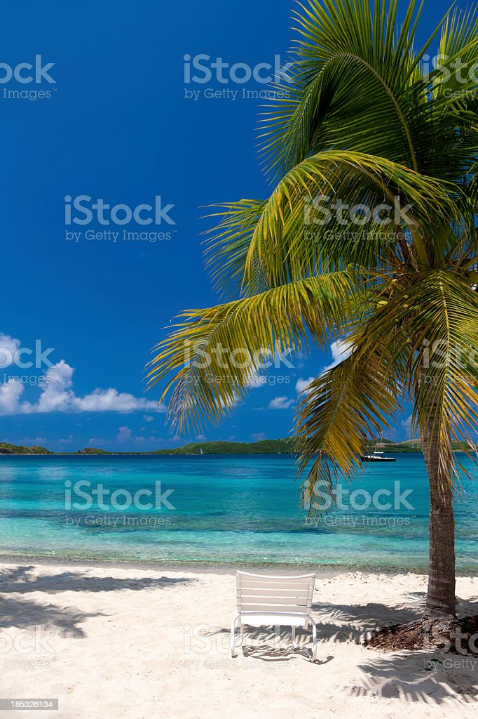 chair and palm tree on the beach in Virgin Islands royalty-free stock photo