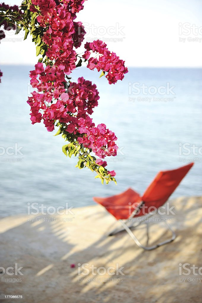 Chair for perfect resting on sea royalty-free stock photo