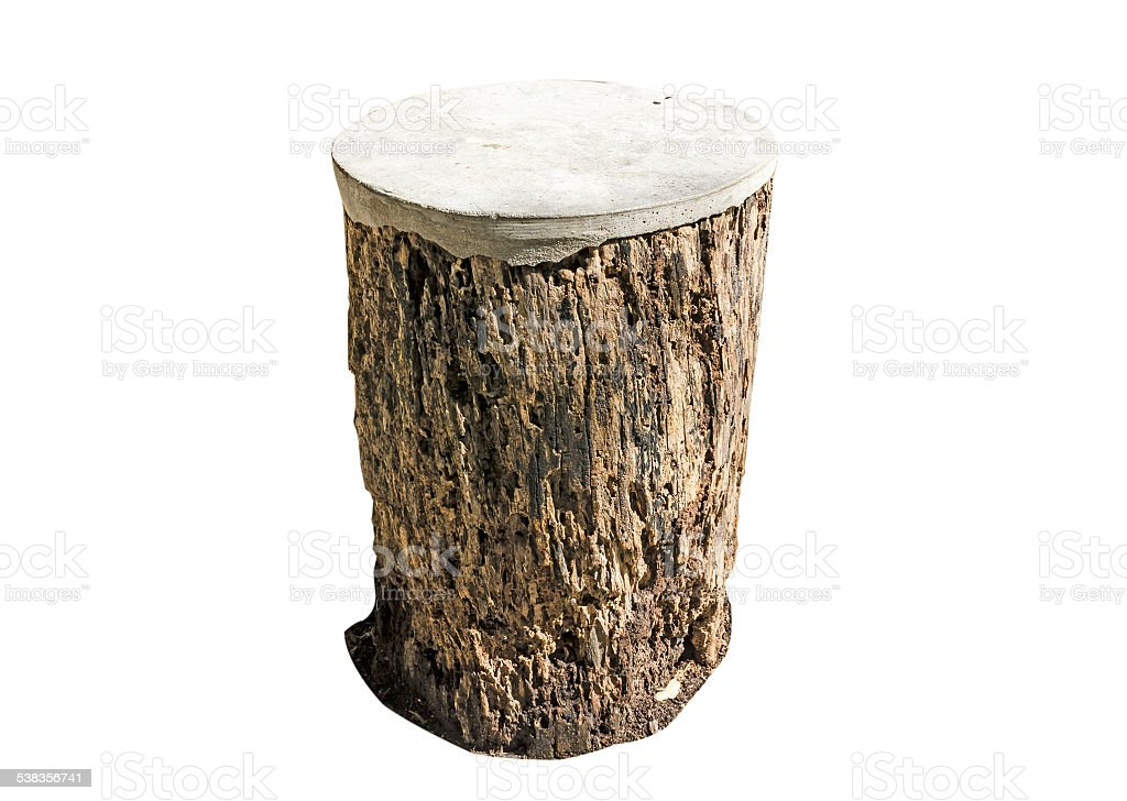 Chair Stump Isolated Stock Photo