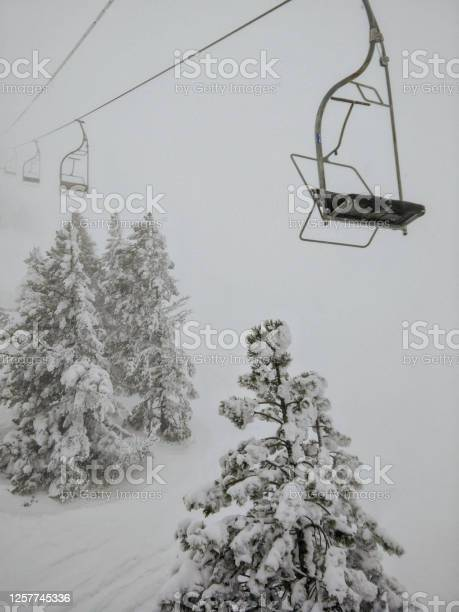 Photo of Chairlift During Blizzard With Snowy Trees