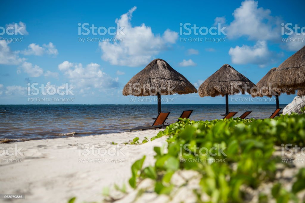 Chairs And Umbrella In Coral Beach - Royalty-free Banner - Sign Stock Photo