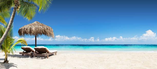 sillas y sombrillas en coral beach - tropical resort banner - playa fotografías e imágenes de stock