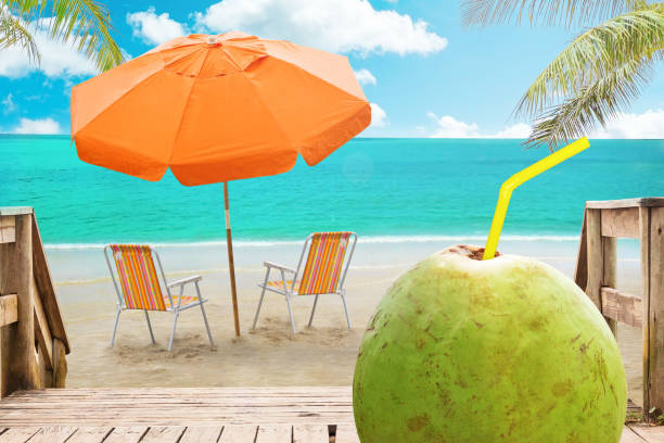 Chaise lounge, coconut and umbrella on beach stock photo