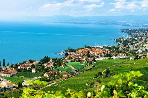 Chalets in Vineyard Terraces hiking trail Lavaux Switzerland