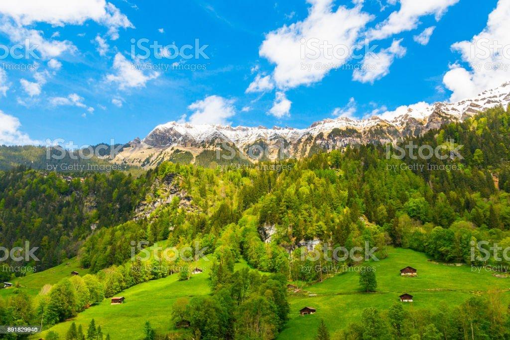 Chalets am grünen Berghang. Schweizer Alpen. Lauterbrunnen, Schweiz, Europa. – Foto
