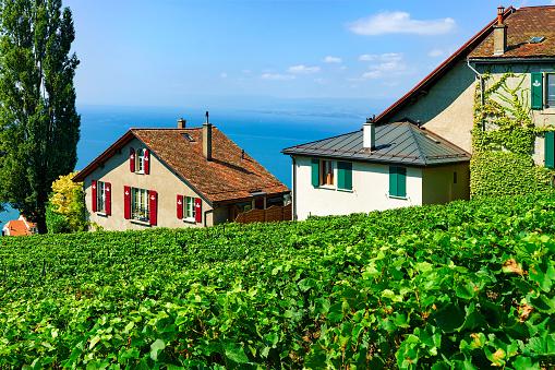 Chalets Vineyard Terrace hiking trail of Lavaux Switzerland