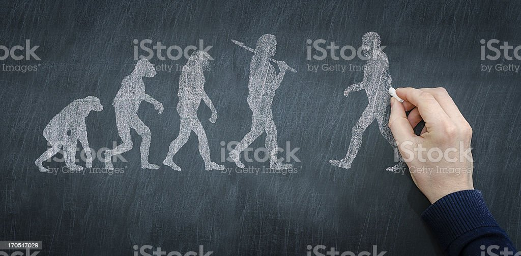Chalkboard illustration of progression of evolution stock photo
