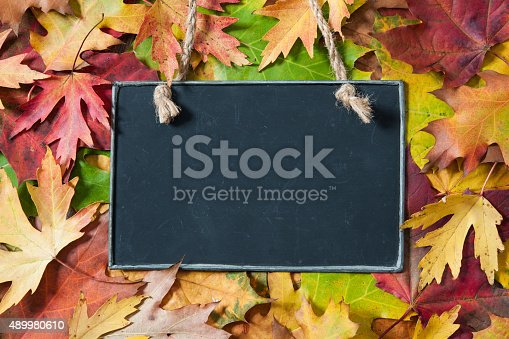 istock Chalkboard  on autumnal leaves 489980610