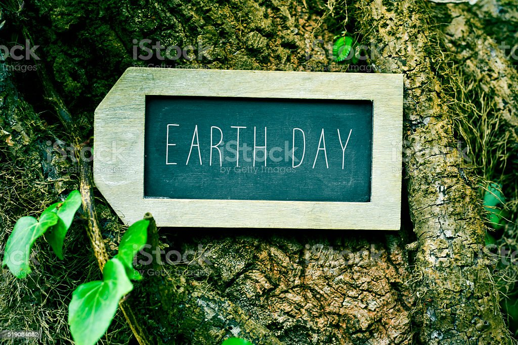 chalkboard with the text earth day in a tree stock photo