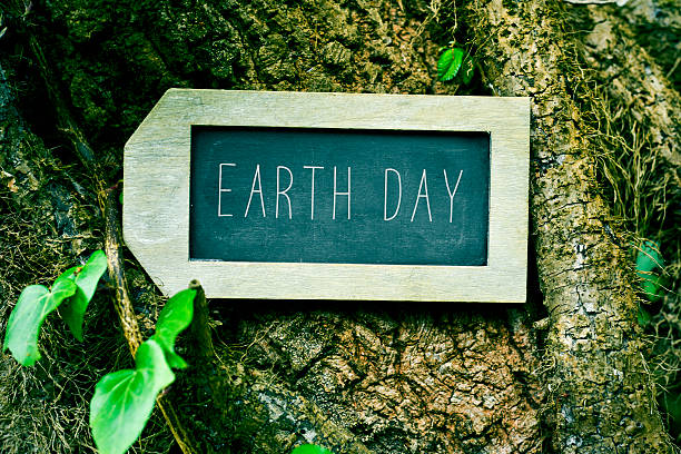 chalkboard with the text earth day in a tree - earth day stock pictures, royalty-free photos & images