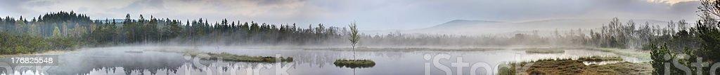 Chalupská slať panorama, Šumava National Park royalty-free stock photo