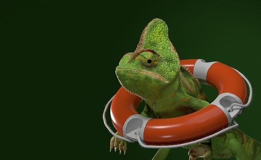 Chameleon inside life buoy on green background. 3d illustration