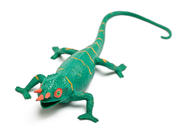 royalty free chameleon toys pictures pictures images and stock