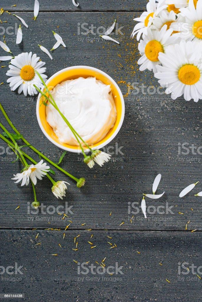 Chamomile cream foto stock royalty-free