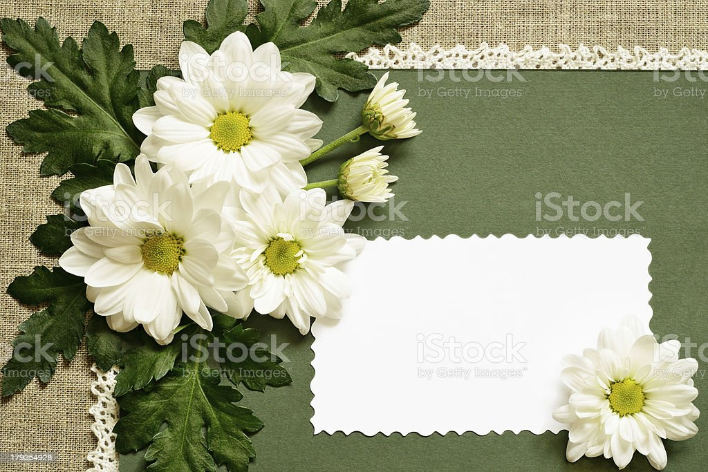 Chamomile decoration and a card royalty-free stock photo