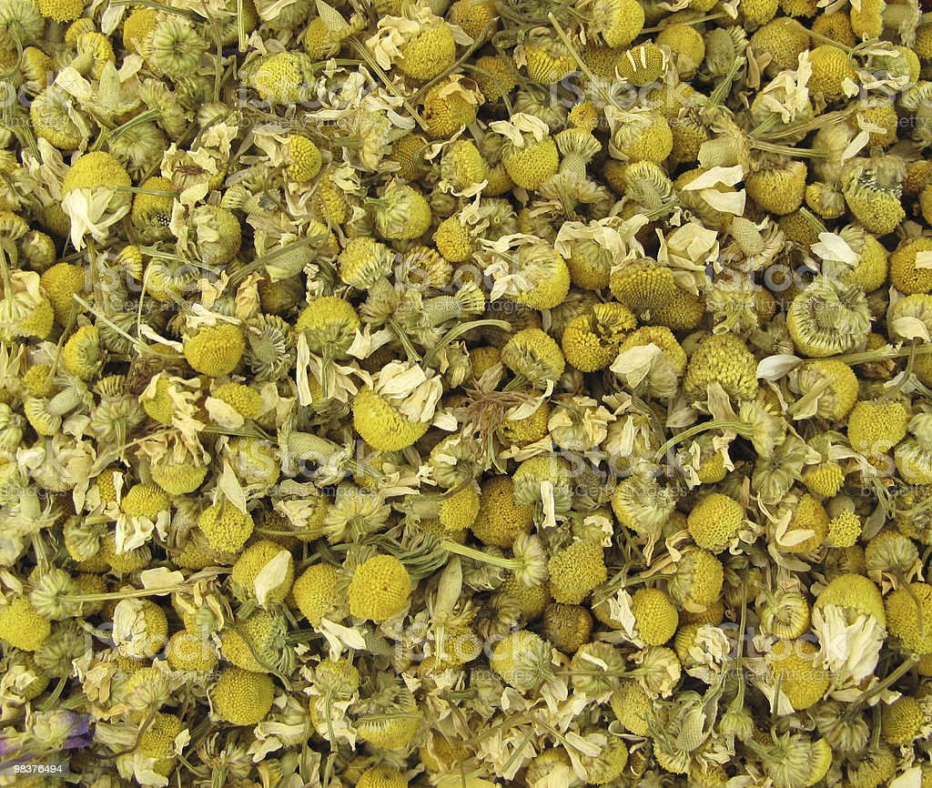 Chamomile dried royalty-free stock photo