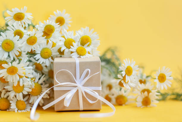 chamomile flowers and gift or present box on yellow background. holiday celebration concept. - mothers day stock pictures, royalty-free photos & images