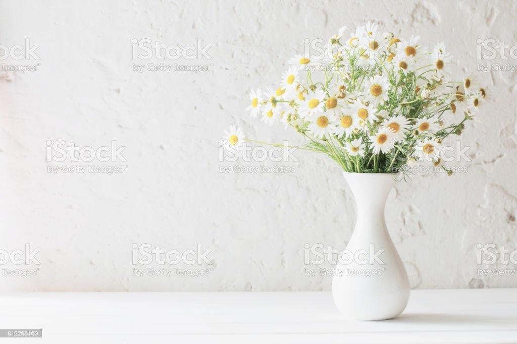 chamomile in vase on white background