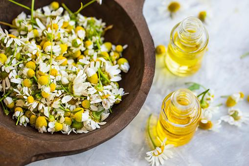 Chamomile Oil Chamomile Essential Oil Bottles With Chamomile Flowers - zdjęcia stockowe i więcej obrazów Ajurweda