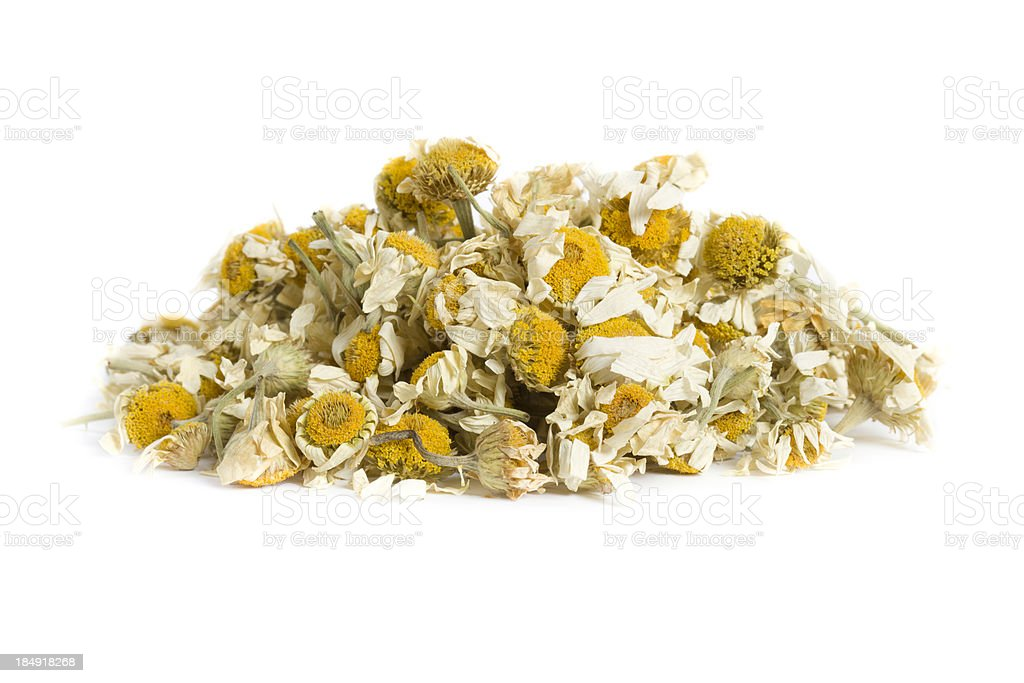 chamomile stock photo