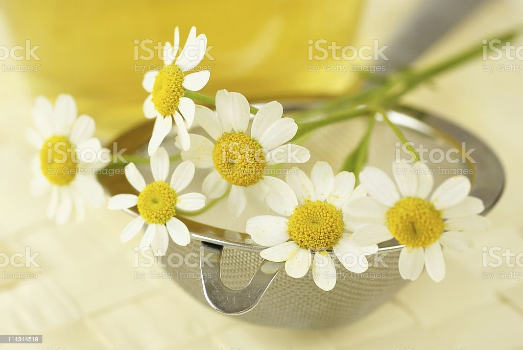 Chamomile tea detail royalty-free stock photo