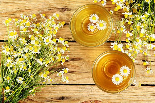 infusión de manzanilla - planta de manzanilla fotografías e imágenes de stock