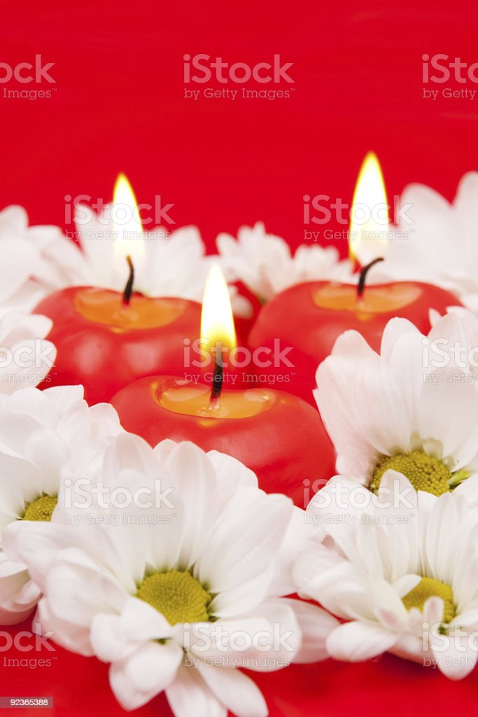 Chamomiles and candles royalty-free stock photo