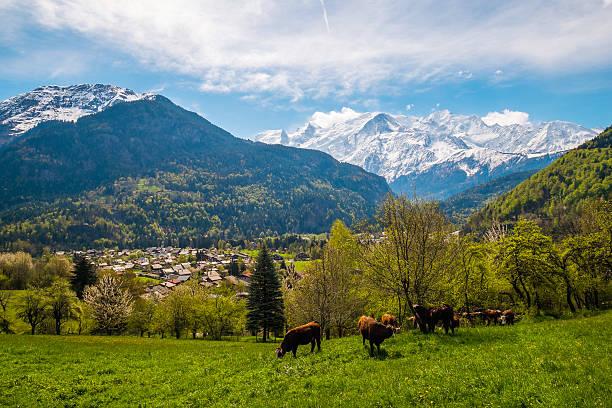 Chamonix valley stock photo