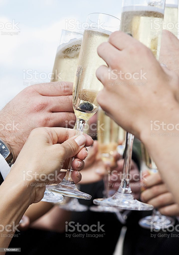 Champagne Cheers royalty-free stock photo