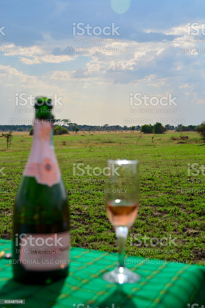 Champagne during luxury safari in the Serengeti stock photo