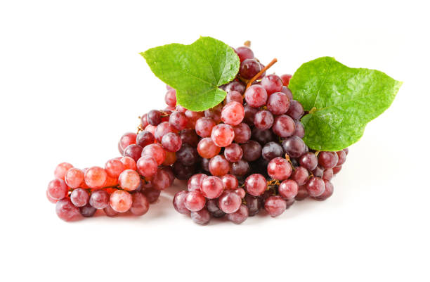 Champagne Grapes isolated on white background stock photo