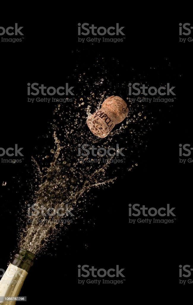 Champagne splash stock photo