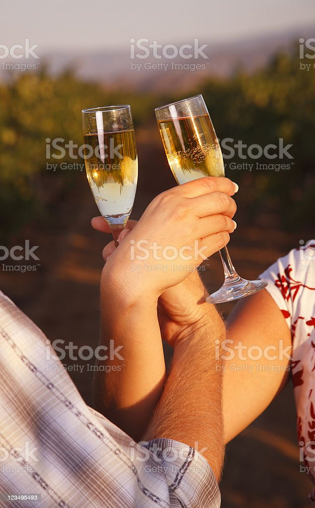 Champagne Toast in a Vineyard royalty-free stock photo