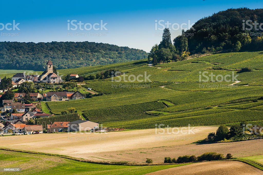 Champagne vineyards Cuis in Marne department, France stock photo