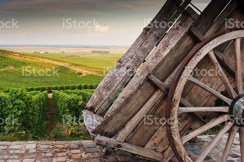 Champagne vineyards in Cramant stock photo