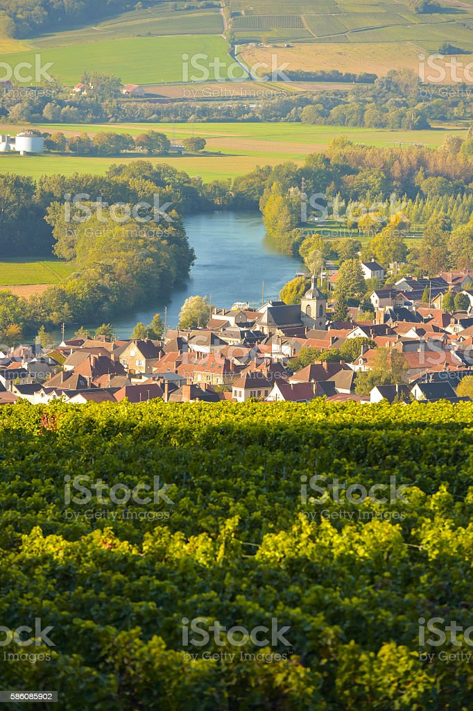Champagne vineyards Villedomange in Marne department, France stock photo