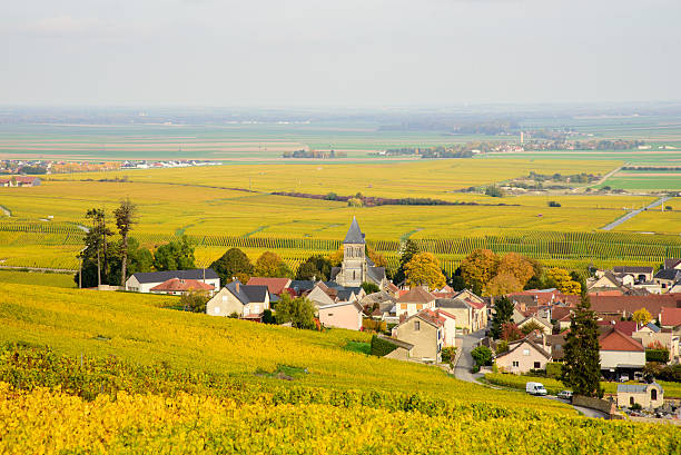 Champagne wine fields during autumn. Village of Oger. Champagne wine fields in autumn colors. Rows of plats with leaves turning from green to yellow. The village of Oger and its church in center. epernay stock pictures, royalty-free photos & images