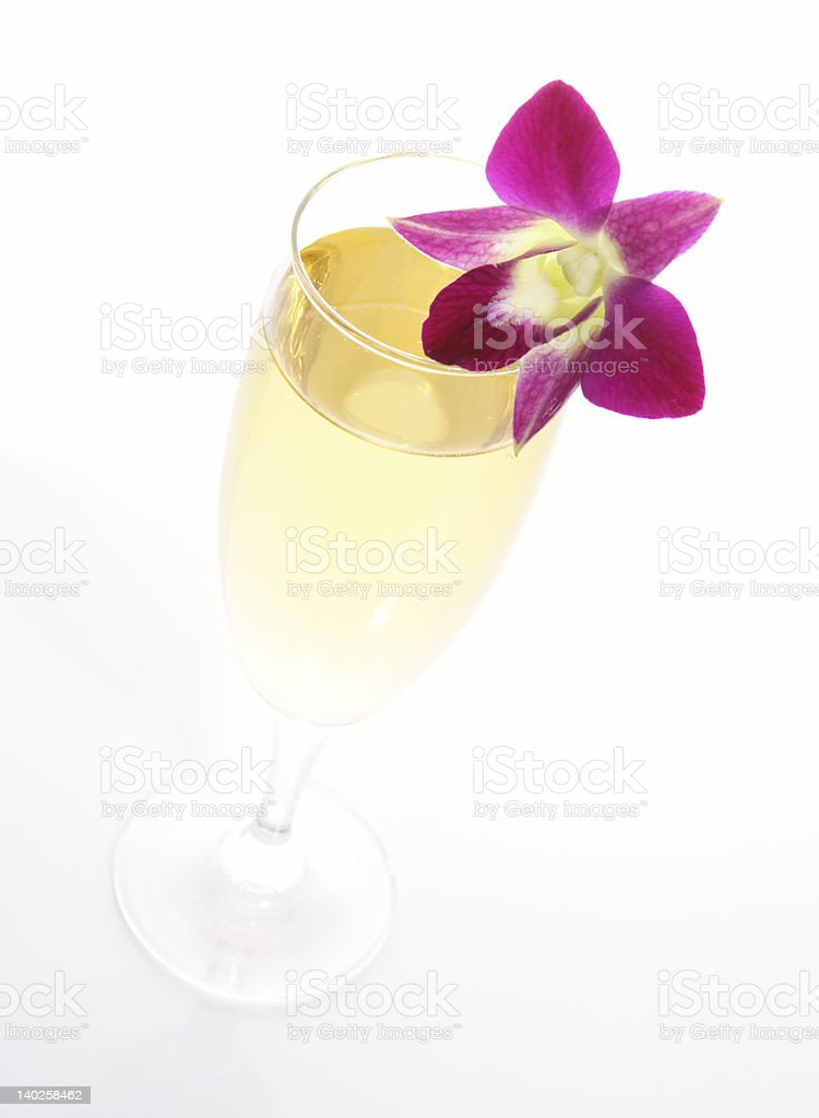 champagne with orchid royalty-free stock photo