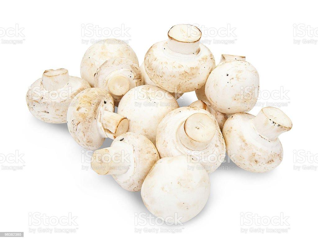 champignon mushroom royalty-free stock photo