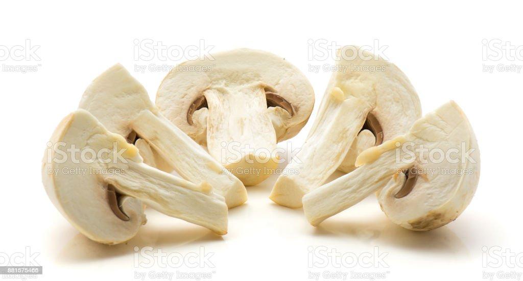 Champignons isolated stock photo