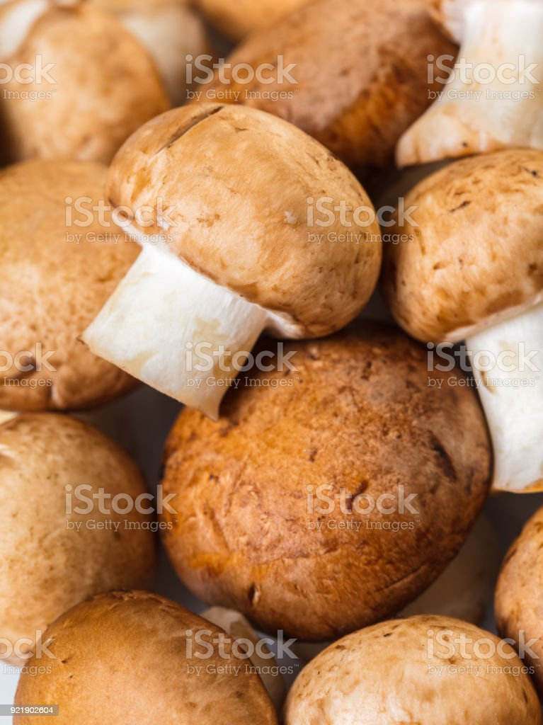 champignons mushrooms closeup stock photo